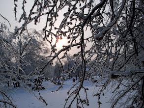 Photo: 31 декабря. Битцевский лес.