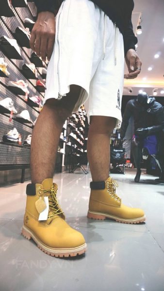 giay timberland boost