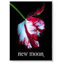 New Moon | The Twilight Saga icon
