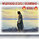 Download Rádio Jesus é o Caminho For PC Windows and Mac