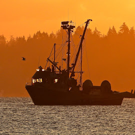 Salish Sea Seiner by Campbell McCubbin - Transportation Boats ( sunrise, fishboat, seiner, dawn, morning )