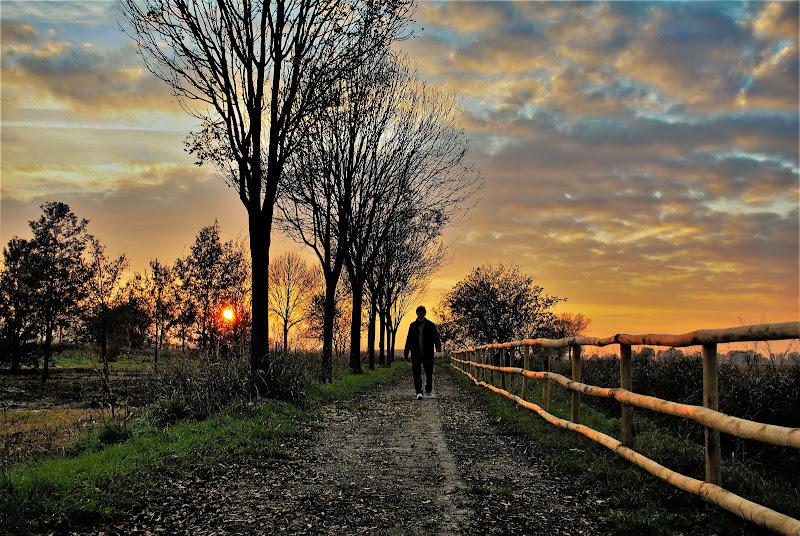 Solitario sentiero del tramonto di Daimon