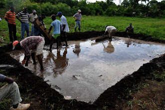 Photo: Training plot is irrigated and leveled the day before transplanting; Ferrier, Haiti, June 2010 [Photo by Erika Styger]