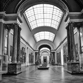 Louvre Museum by Vesna  Podkrajac - Buildings & Architecture Public & Historical ( louvre museum, paris., france, museum, monocrome photography )