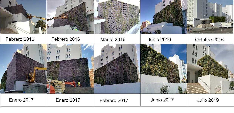 Proceso de construcción del jardín vertical del hotel HM de Mallorca