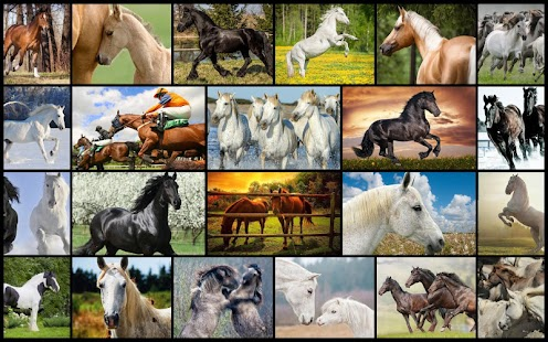Horses Jigsaw Puzzles for Kids- screenshot thumbnail
