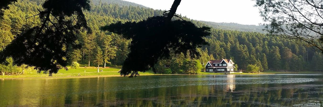 Bir doğa armağanı: Abant Gölü