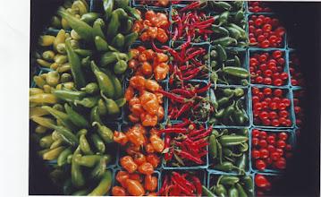Photo: FARMER'S MARKET