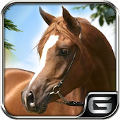 Horse Jump Run Simulator:Show