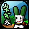 鳥取県米子市にてネギ太、ネギを刈る。 icon