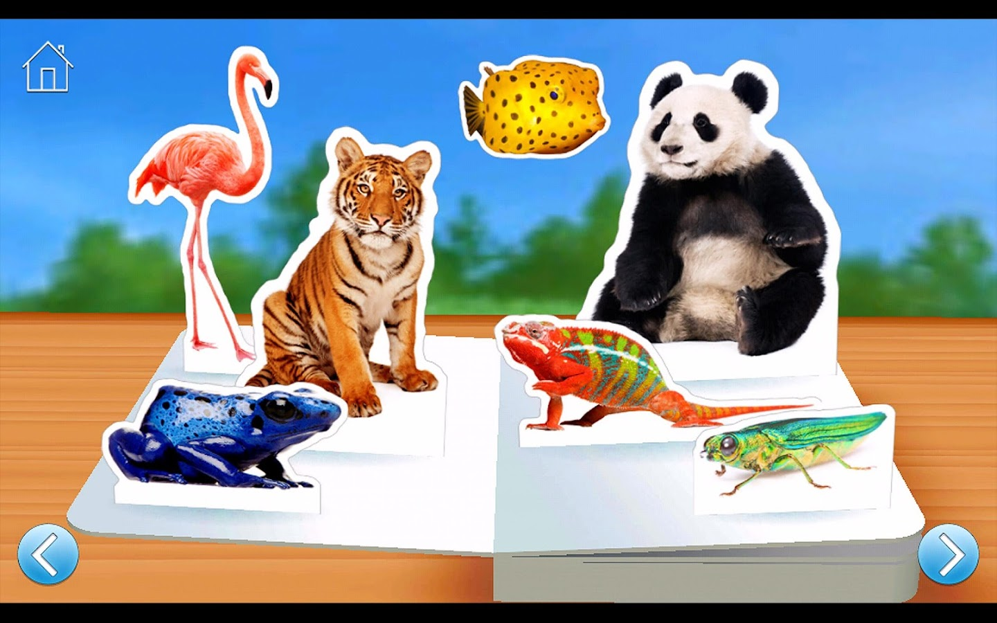 zoo animals android apps on google play