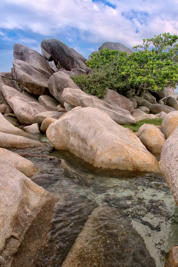 by Dedy Triana - Nature Up Close Rock & Stone