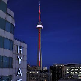 CN Tower Toronto  by Jonathan White - City,  Street & Park  Skylines ( towers, sunset, toronto, buildings, landscape, city )
