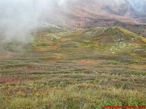 Photo: IMG_4101 i colori dell autunno sull appennino reggiano dallo 00