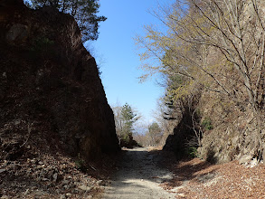 林道は岩を割って