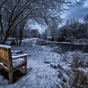 Nature Reserve Shipley by Andrew Holland - Landscapes Weather