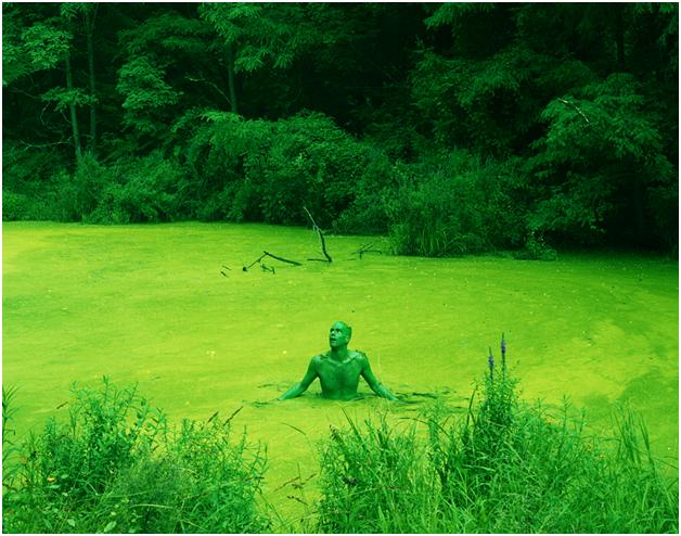 Может ли зеленый цвет негативно повлиять на человека?