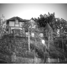 homes by Stephany Gee - Black & White Buildings & Architecture (  )