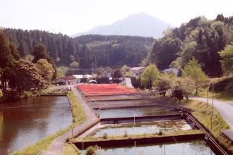 Photo: Fish farm Kirishima