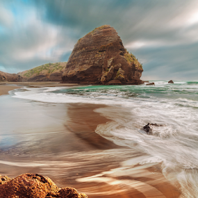 The Camel Rock by Anupam Hatui - Landscapes Beaches ( piha, nature, waterscape, rock, beach, landscape, canonnz, new zealand, structures )