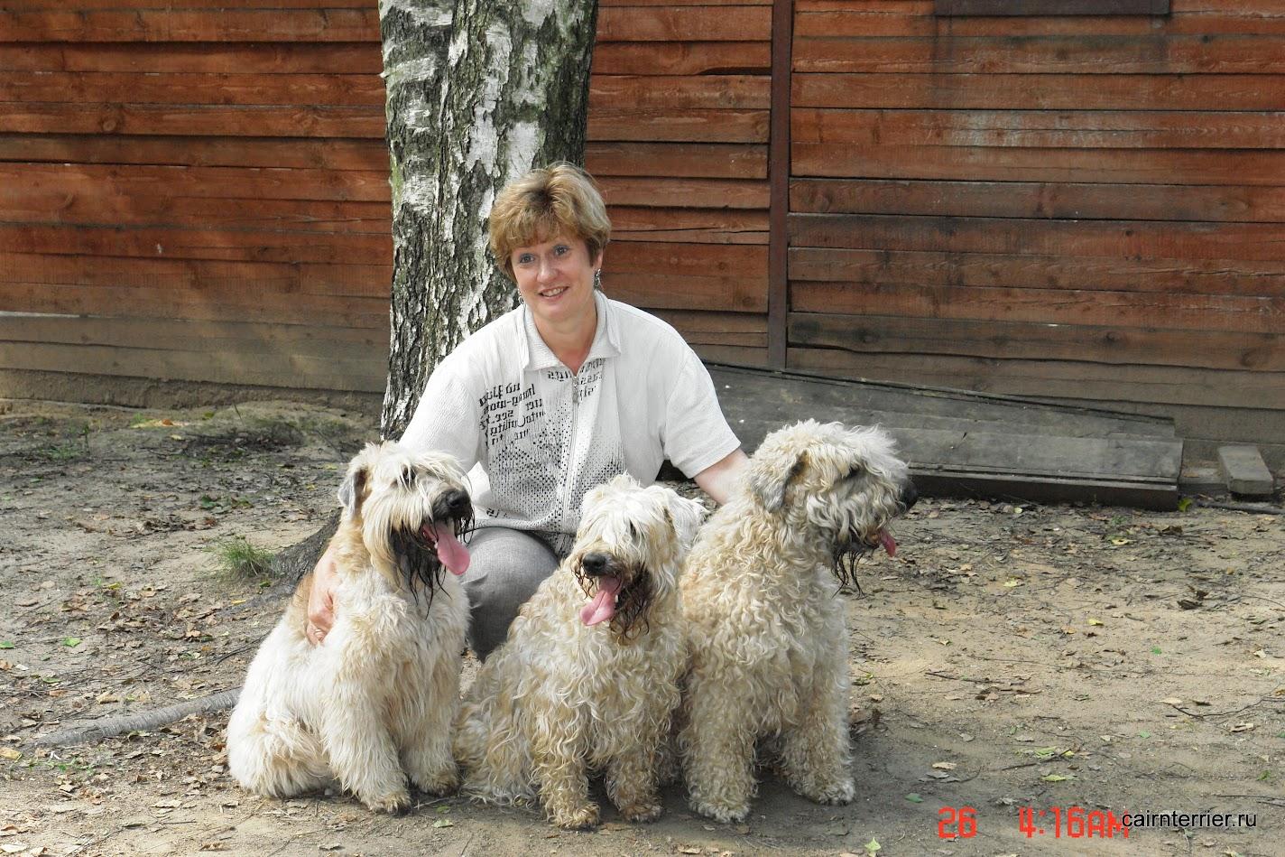 Сенашенко Екатерина. Судья ДОСААФ с 1988 г. Судья РКФ-FCI по всем породам собак с 2007 г.