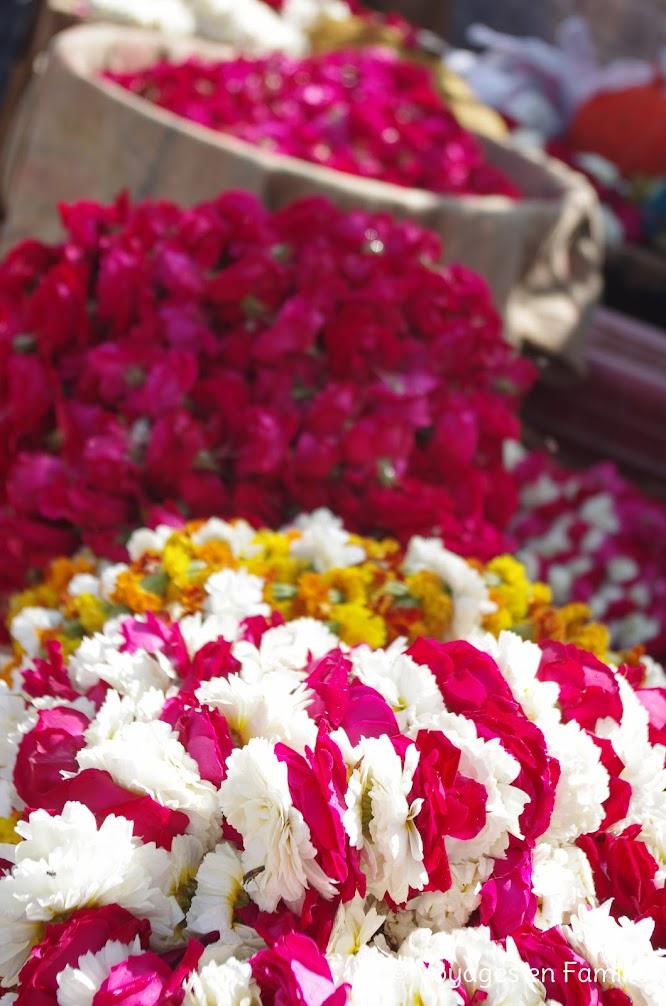Bundi, marché fleurs