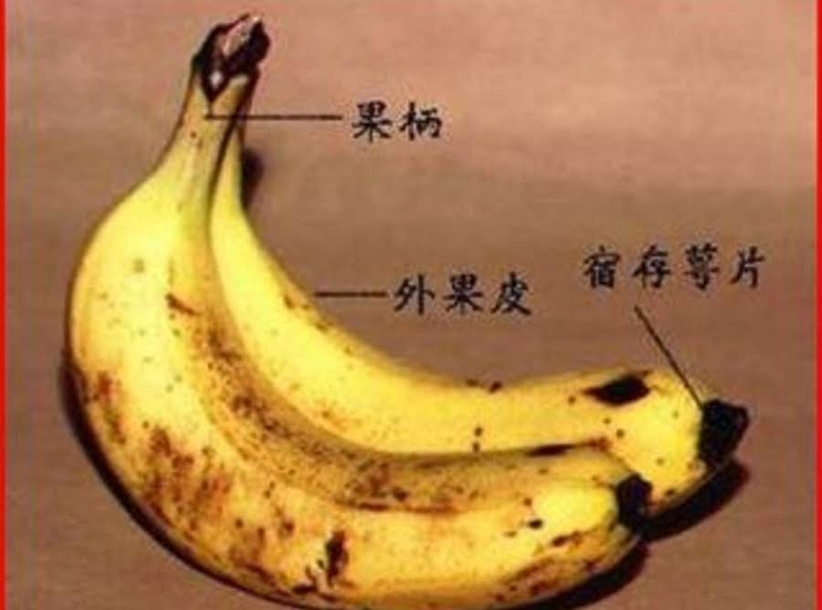 Healthy Things A Banana Can Do For You Recipe Just A Pinch