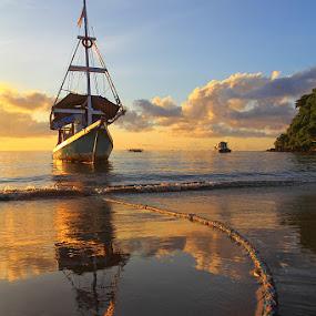 :: park :: by Eddy Due Woi - Landscapes Beaches ( nature, flores, travel, landscape, , beach )