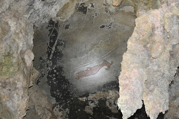 Find ancient wall paintings on the ceiling of the cave