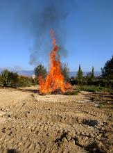 Photo: tuinafval wordt opgestookt
