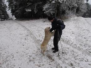Photo: 07.Zaczepia nas miły miejscowy kundel, który łaknie pieszczot.