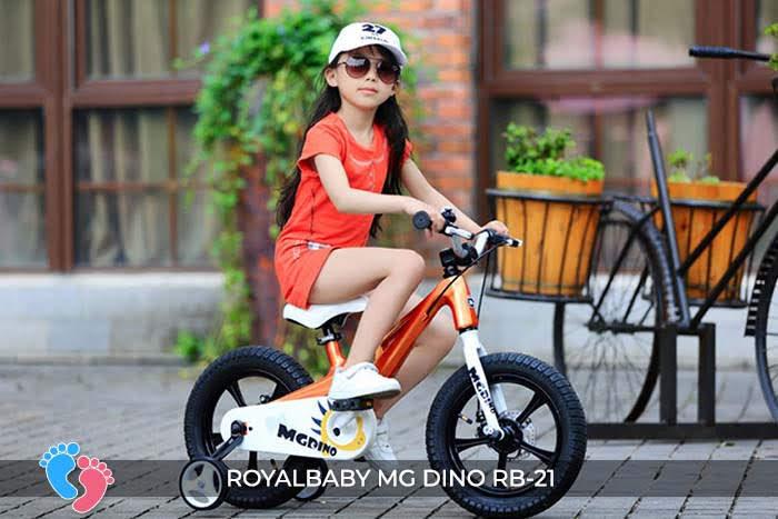 xe đạp trẻ em roya baby