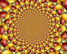 Photo: Fruit Mandala