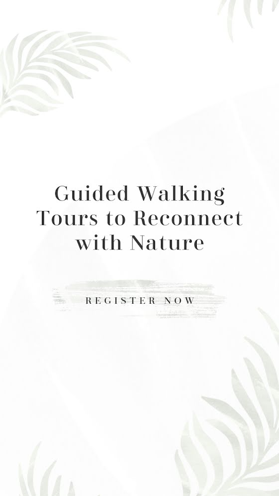Guided Walking Tours - Facebook Story Template