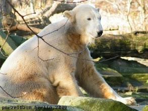 Photo: Knut :-)