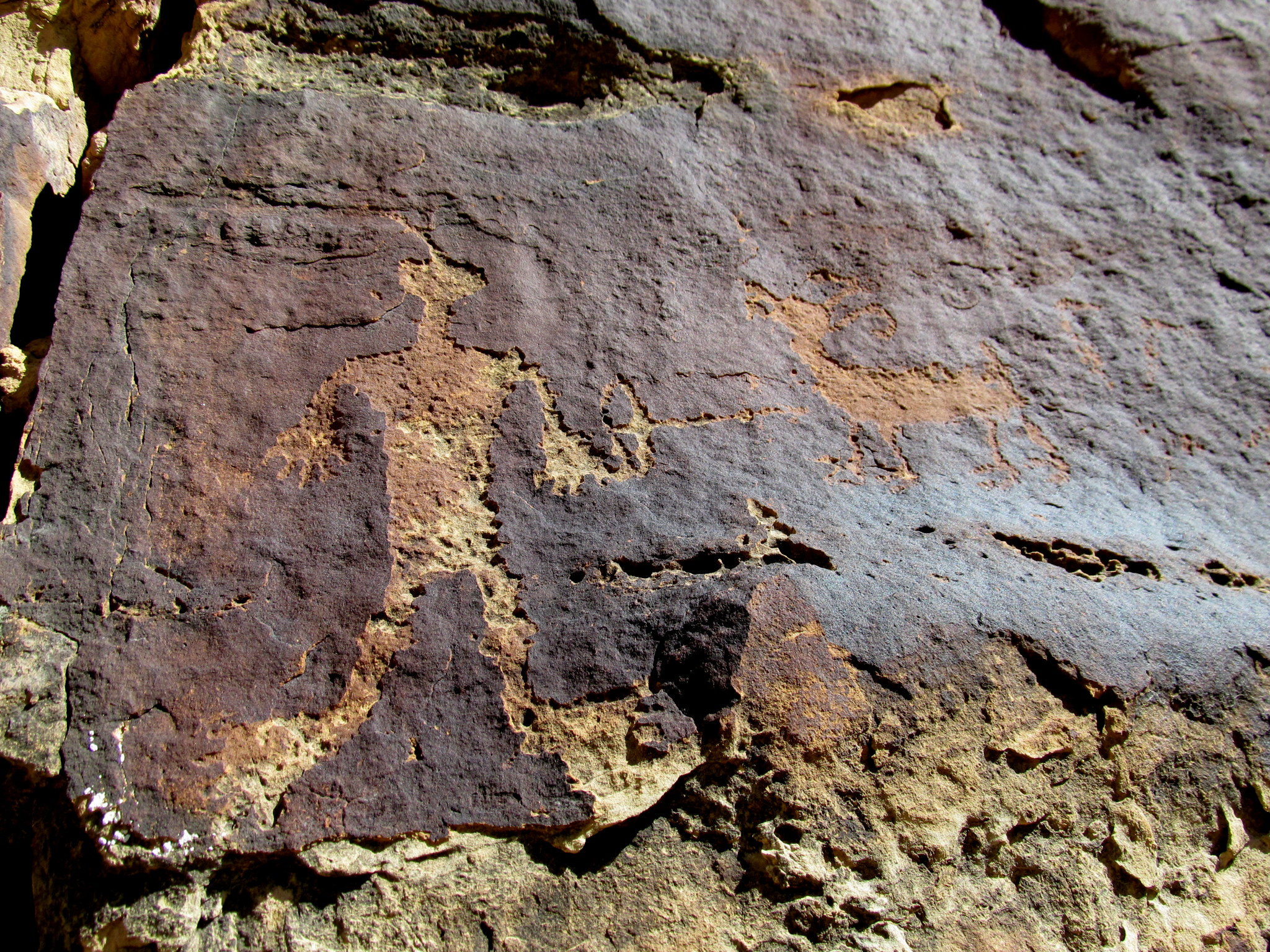 Photo: Detailed archer and bighorn sheep petroglyphs