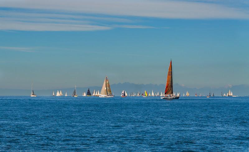Costa Azzurra, vele sul mare - Alessandra Castiglioni (Fiorina) di Moreno re