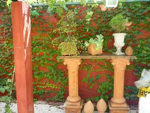 Photo: Olhando com mais proximidade. http://celiamartins.blogspot.com/