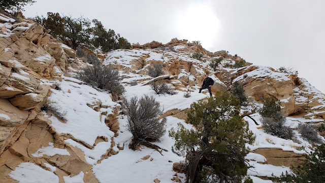 Climbing a trail through the ledges