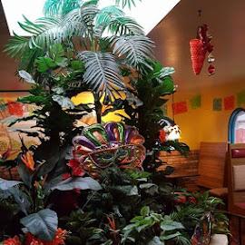 Mexican Restaurant Display by Suzette Christianson - Flowers Flower Arangements