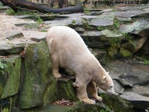 Photo: Erneuter Ausflug zum Wassergraben ;-)