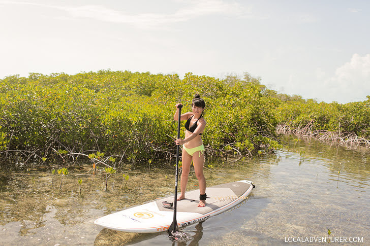Stand Up Paddleboarding with Big Blue Unlimited (Best Things to Do in Providenciales).