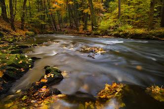 Photo: #landscapephotography curated by +Margaret Tompkins, +Ke Zeng, +David Heath Williamsand +paul t beard +10000 PHOTOGRAPHERS around the World #1000photographersaroundtheworld by +Robert SKREINERand +Walter Soestbergen #photoplusextract by +Jarek Klimek  +HQSP Landscape  #hqsplandscape   #germany  #saxony  #saxonswitzerland  #autumn