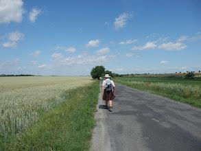 Photo: Cesta na Okoř.