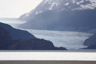 Photo: Our first glimpse of Grey Glacier