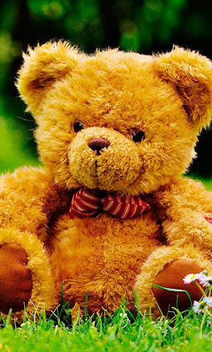 Download Teddy Bears Live Wallpaper Google Play Softwares