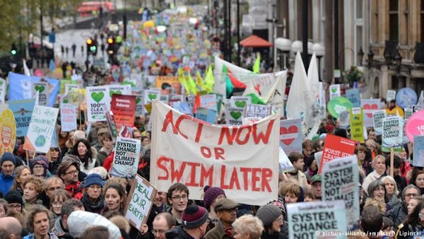 Environmental Activists Recipe