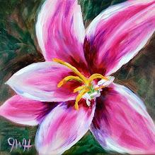 Photo: Pink Daylily