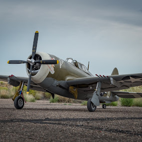 Mission Ready by Fred Prince - Transportation Airplanes ( maloof, albuquerque, rc plane, new mexico, p-47 thunderbolt )