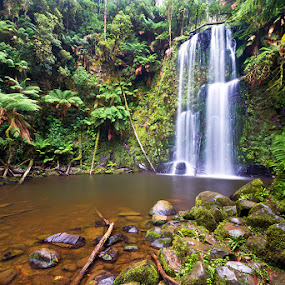 Beauchamp Falls by Jason Asher - Landscapes Forests